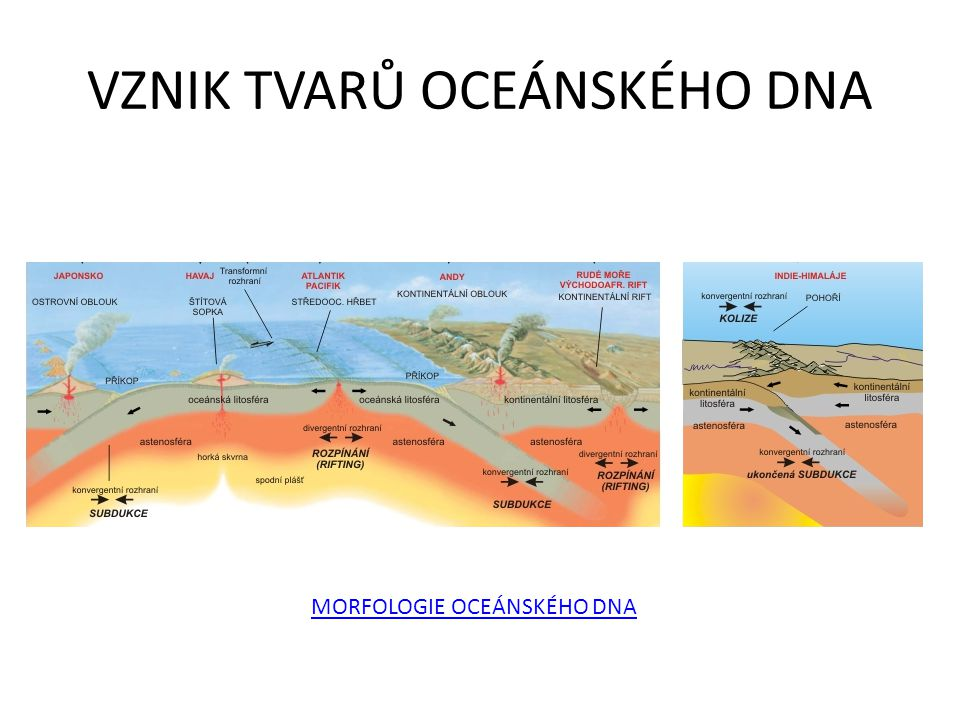 VZNIK TVARŮ OCEÁNSKÉHO DNA