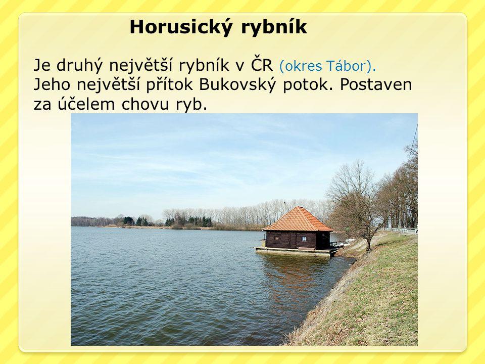 Horusický rybník Je druhý největší rybník v ČR (okres Tábor).