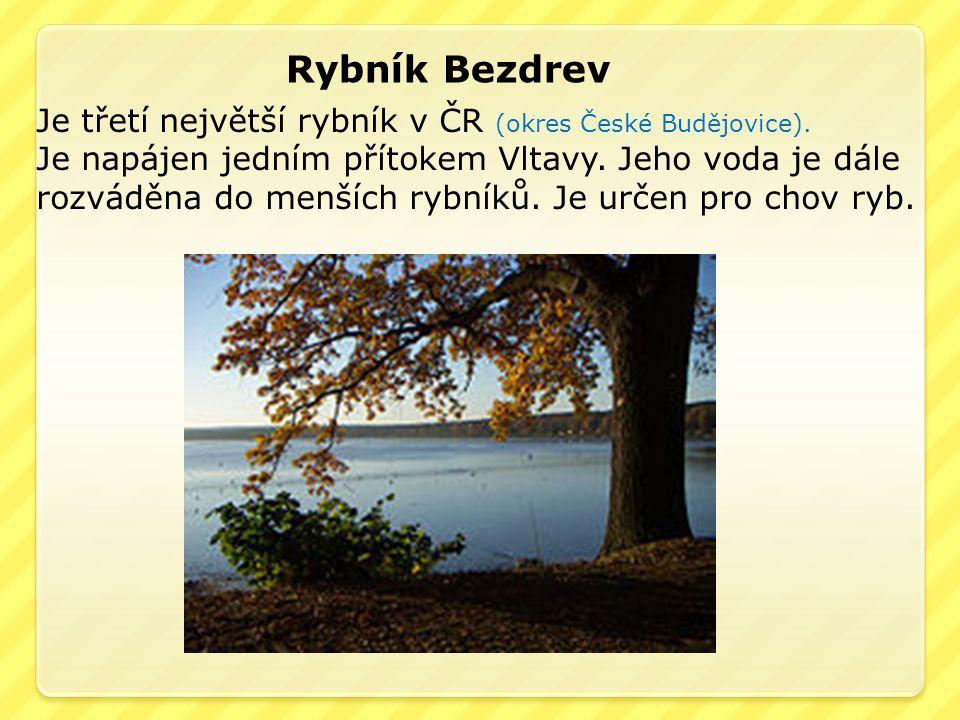 Rybník Bezdrev Je třetí největší rybník v ČR (okres České Budějovice).