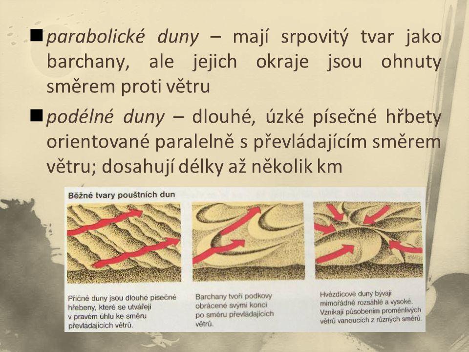 parabolické duny – mají srpovitý tvar jako barchany, ale jejich okraje jsou ohnuty směrem proti větru