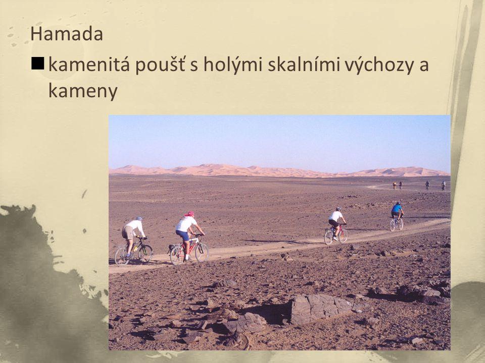 Hamada kamenitá poušť s holými skalními výchozy a kameny