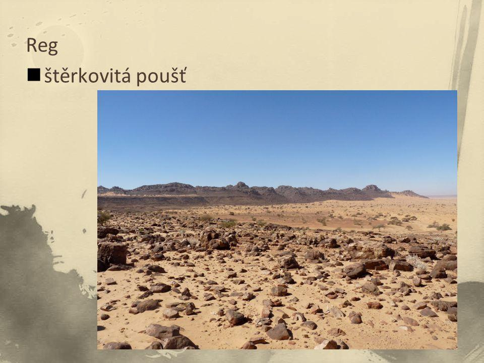 Reg štěrkovitá poušť