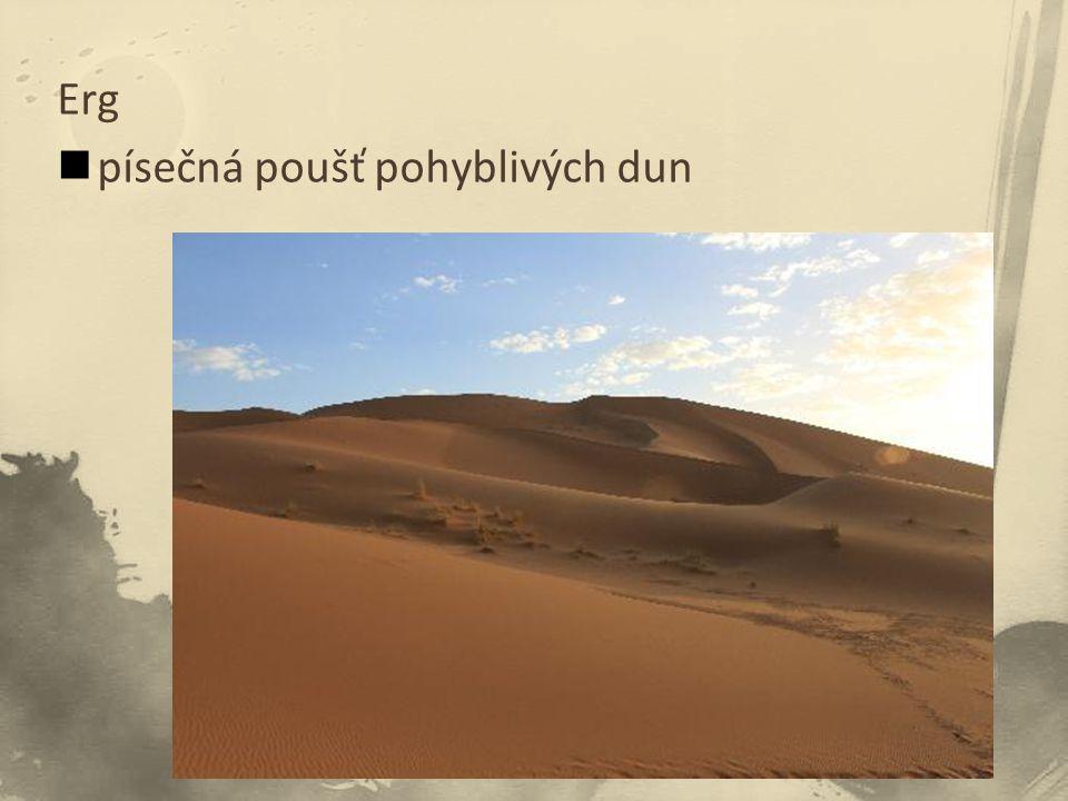 Erg písečná poušť pohyblivých dun