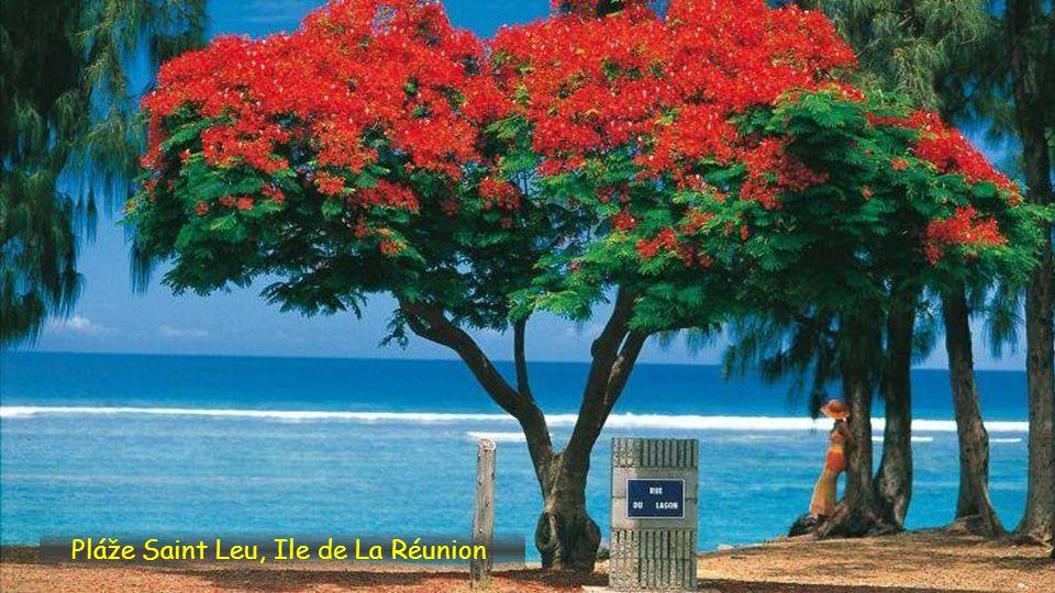 Pláže Saint Leu, Ile de La Réunion
