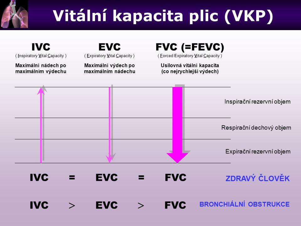 Vitální kapacita plic (VKP)