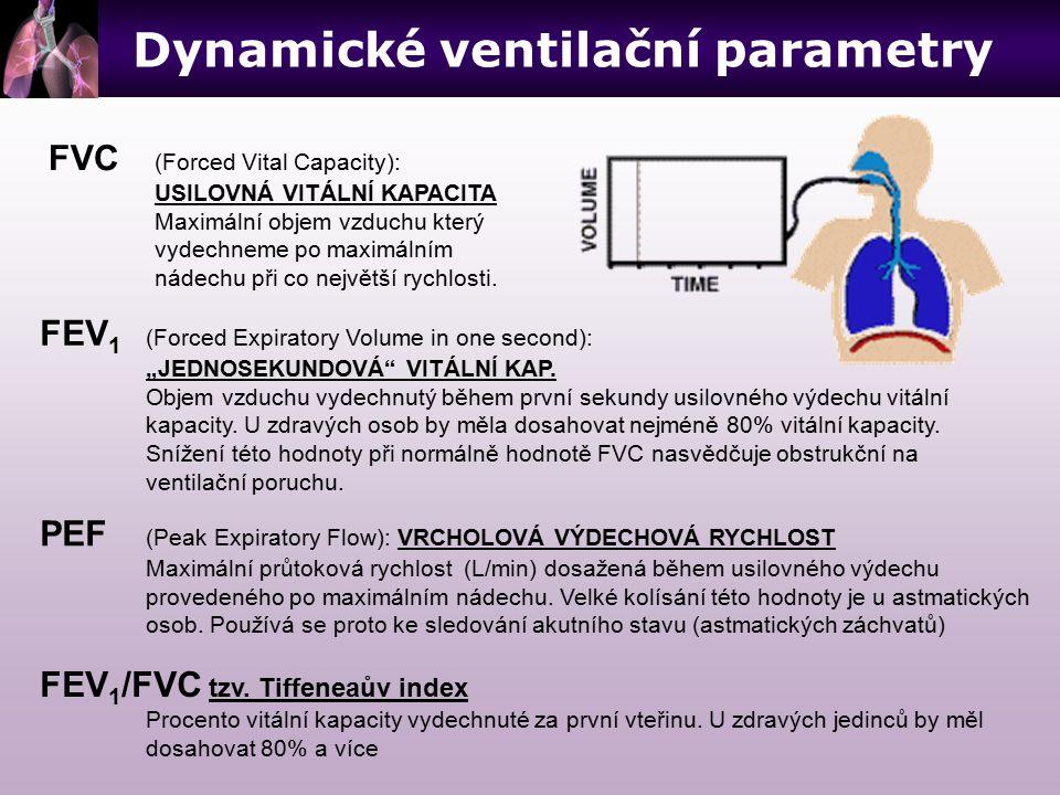 Dynamické ventilační parametry