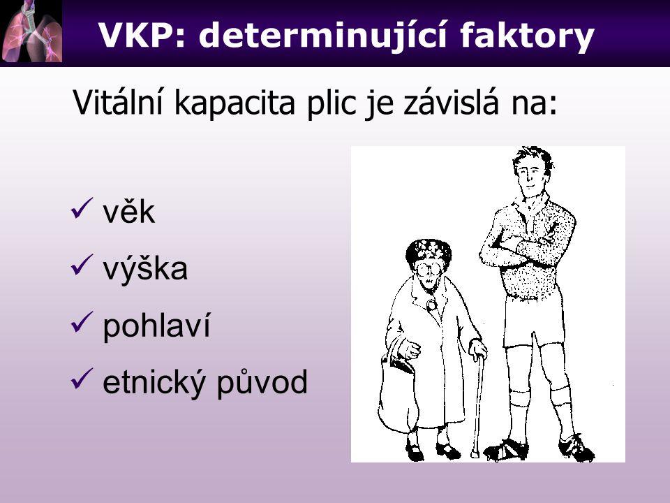 VKP: determinující faktory