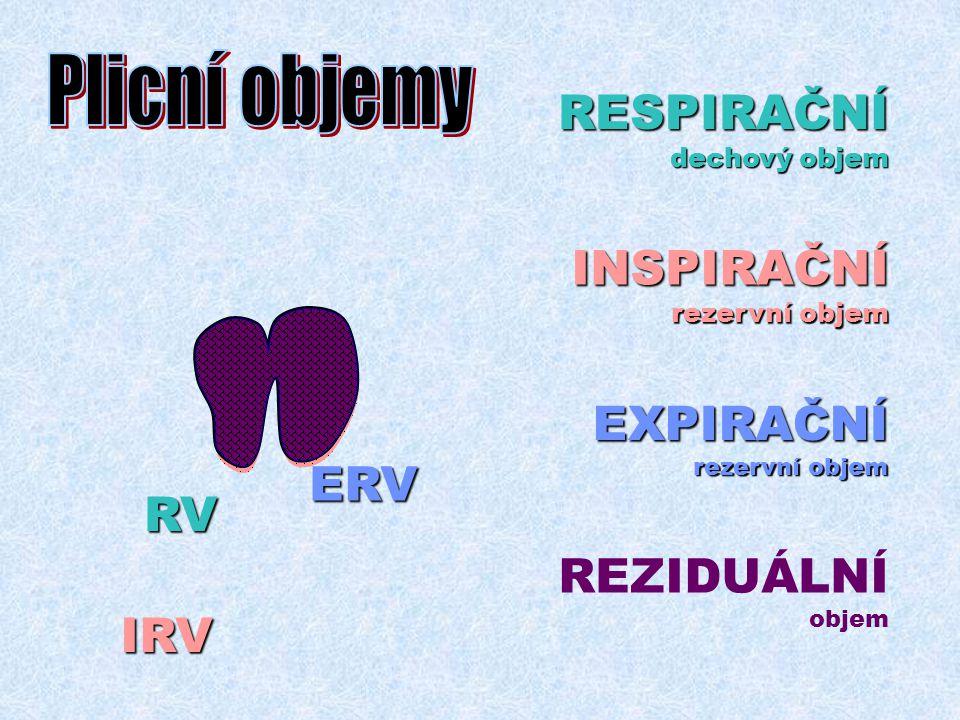 Plicní objemy RESPIRAČNÍ INSPIRAČNÍ EXPIRAČNÍ ERV RV REZIDUÁLNÍ IRV