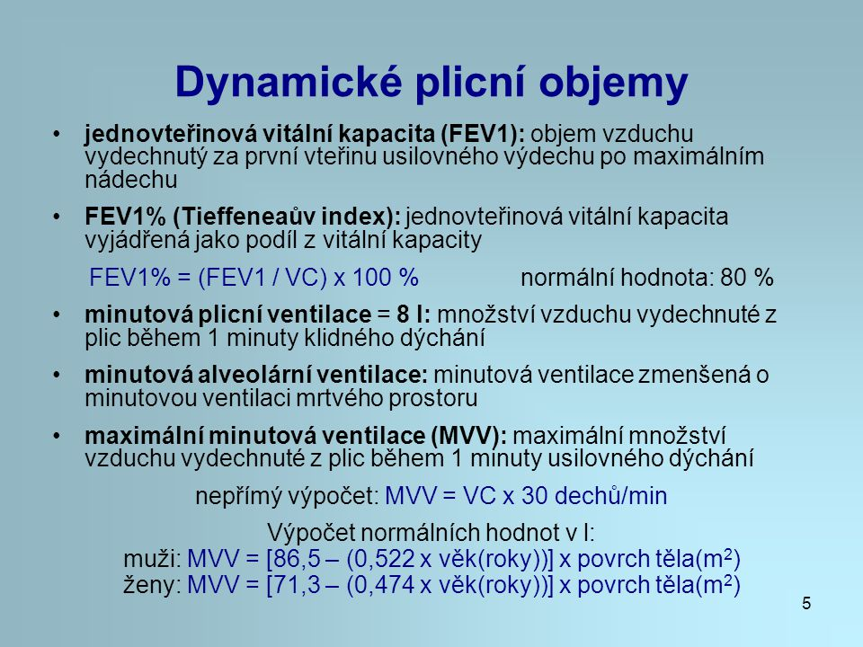 Dynamické plicní objemy
