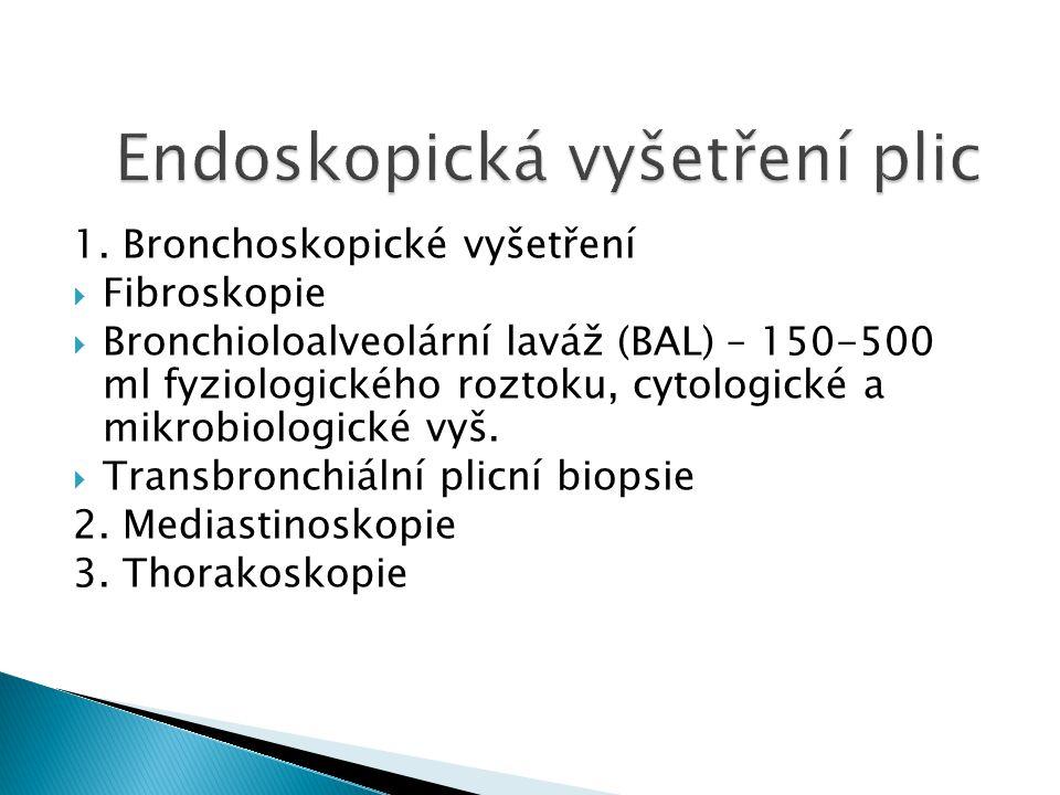Endoskopická vyšetření plic