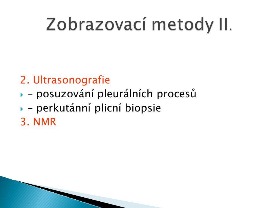 Zobrazovací metody II. 2. Ultrasonografie