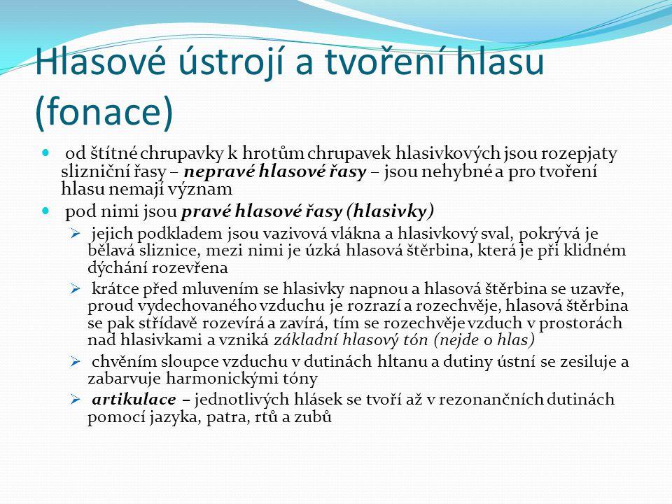 Hlasové ústrojí a tvoření hlasu (fonace)