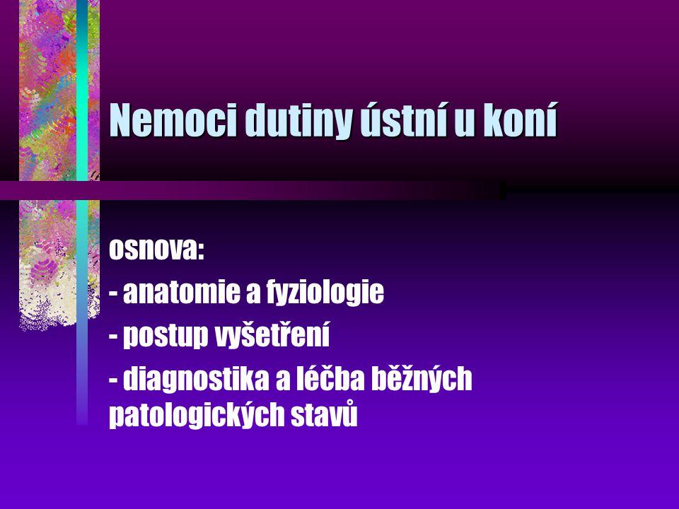 Nemoci dutiny ústní u koní