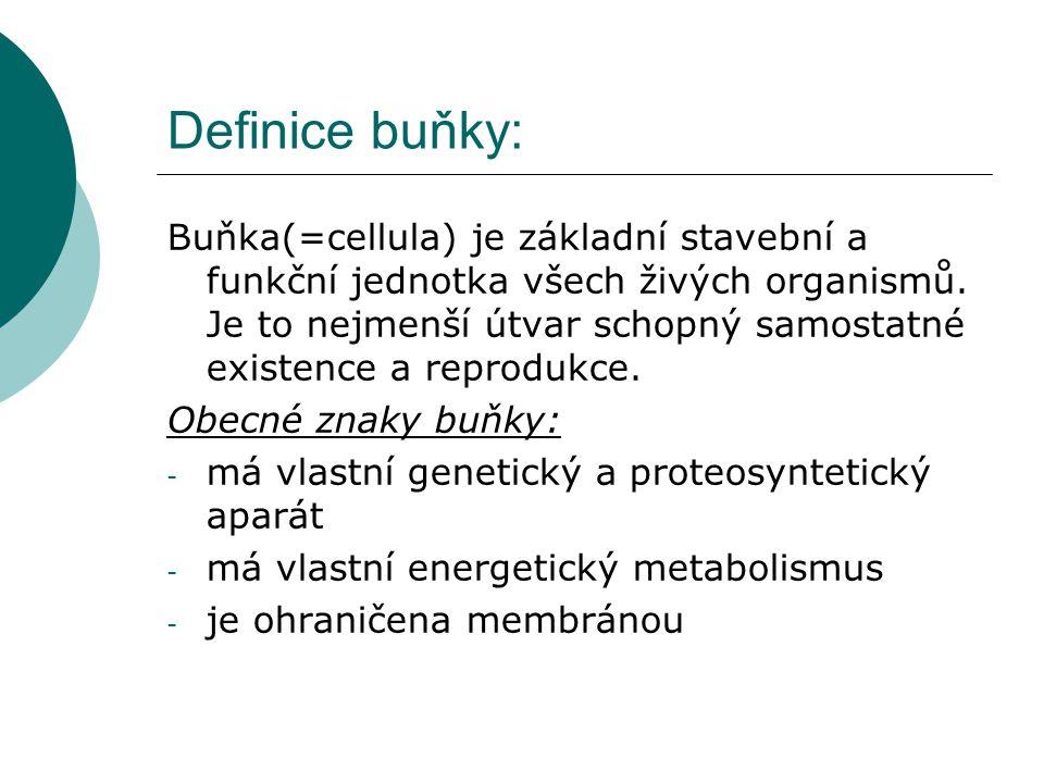 Definice buňky: