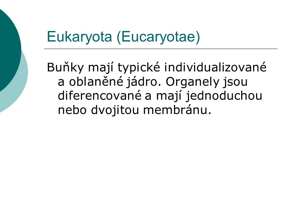 Eukaryota (Eucaryotae)