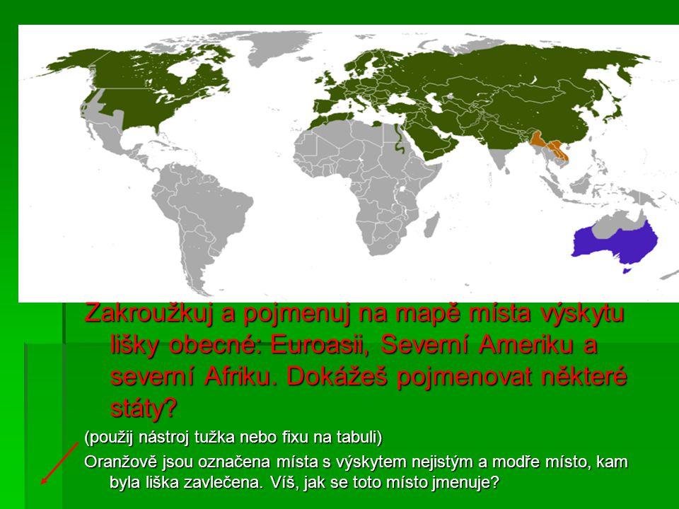 Zakroužkuj a pojmenuj na mapě místa výskytu lišky obecné: Euroasii, Severní Ameriku a severní Afriku. Dokážeš pojmenovat některé státy