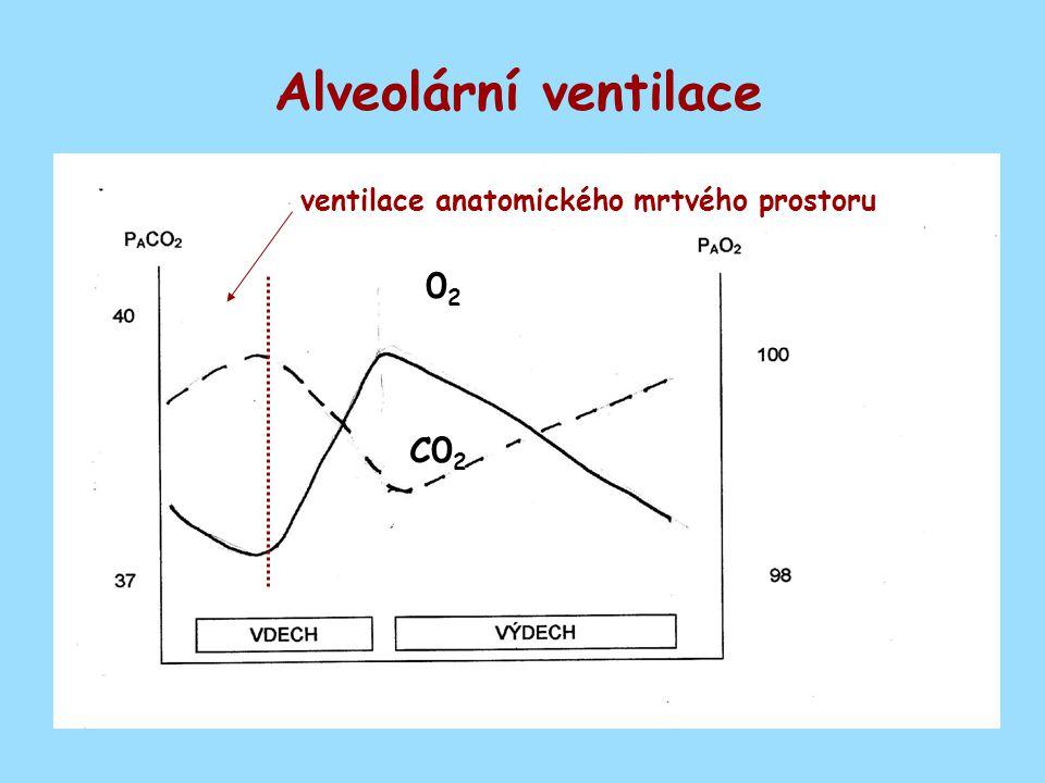 Alveolární ventilace ventilace anatomického mrtvého prostoru 02 C02