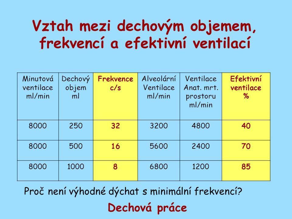 Vztah mezi dechovým objemem, frekvencí a efektivní ventilací