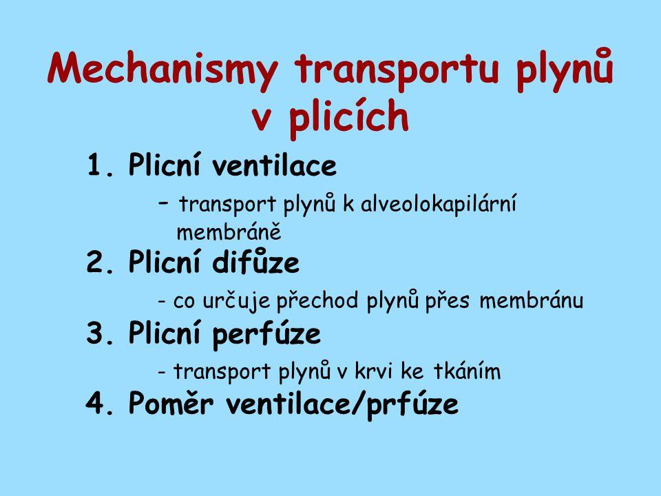 Mechanismy transportu plynů v plicích