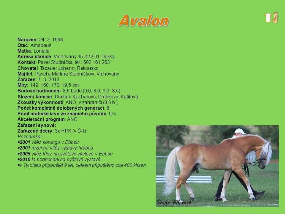 Avalon Narozen: 24. 3. 1998 Otec: Amadeus Matka: Lonella