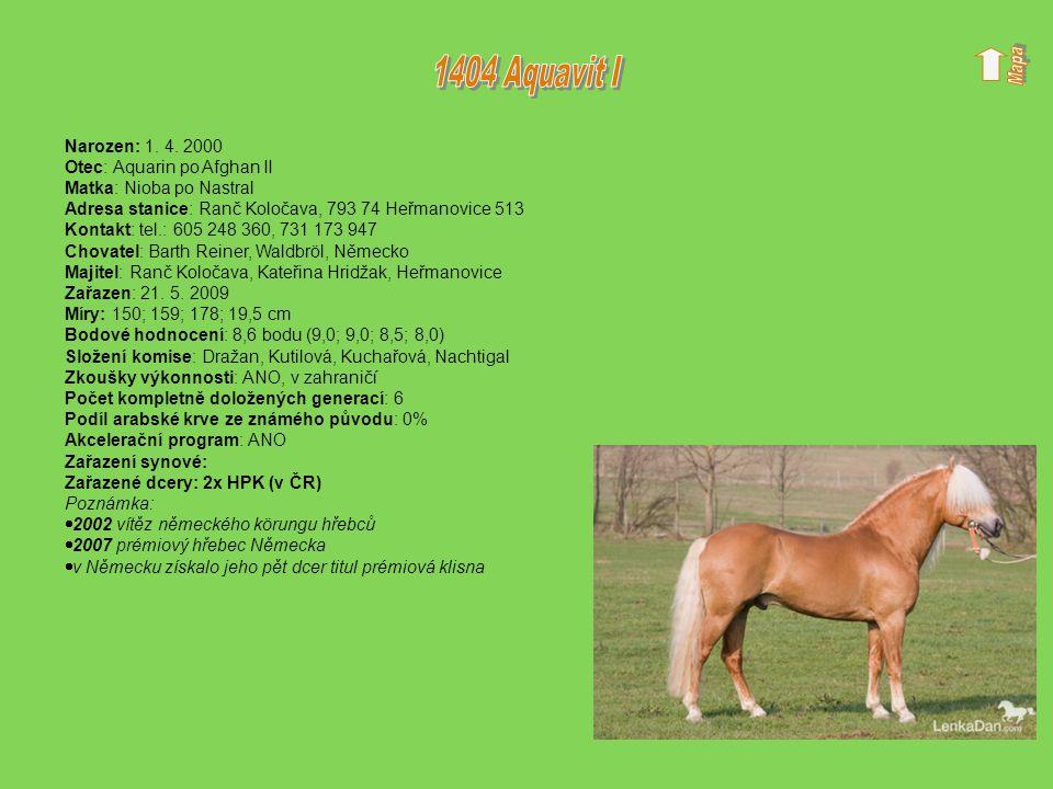 1404 Aquavit I Narozen: 1. 4. 2000 Otec: Aquarin po Afghan II
