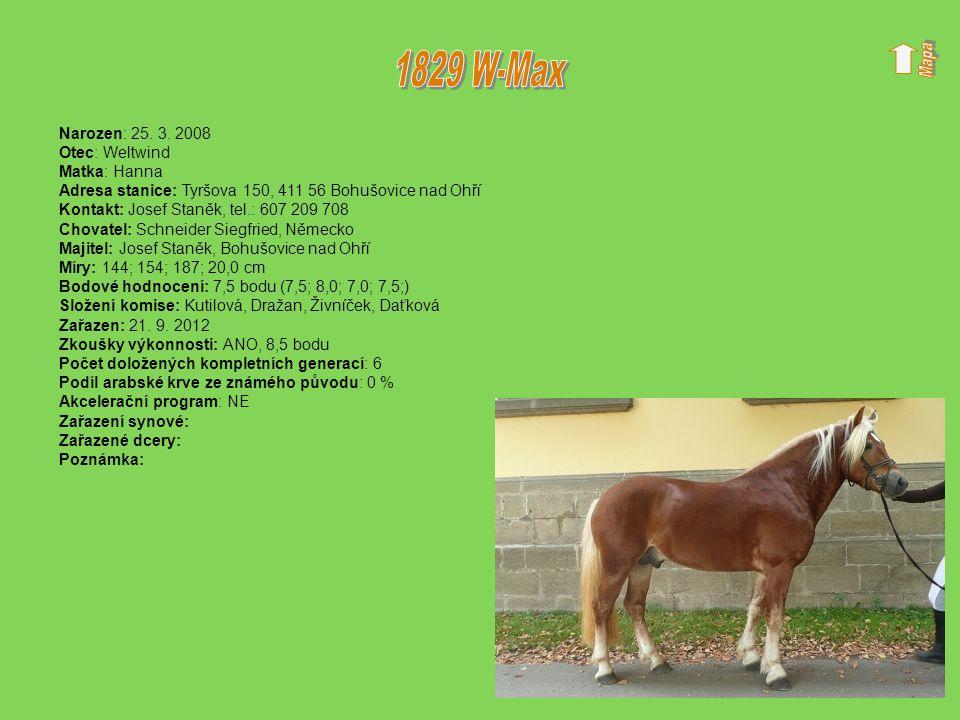 1829 W-Max Narozen: 25. 3. 2008 Otec: Weltwind Matka: Hanna