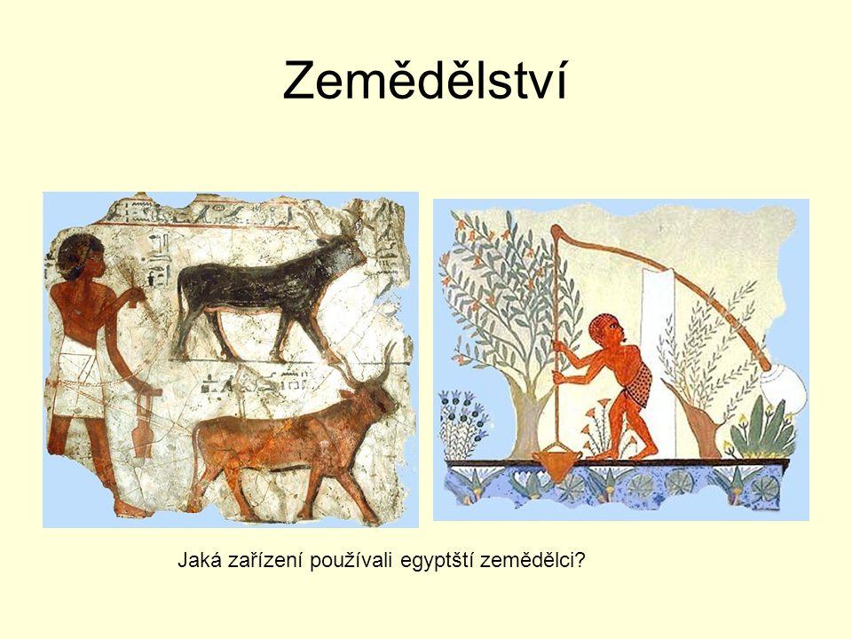 Zemědělství Jaká zařízení používali egyptští zemědělci
