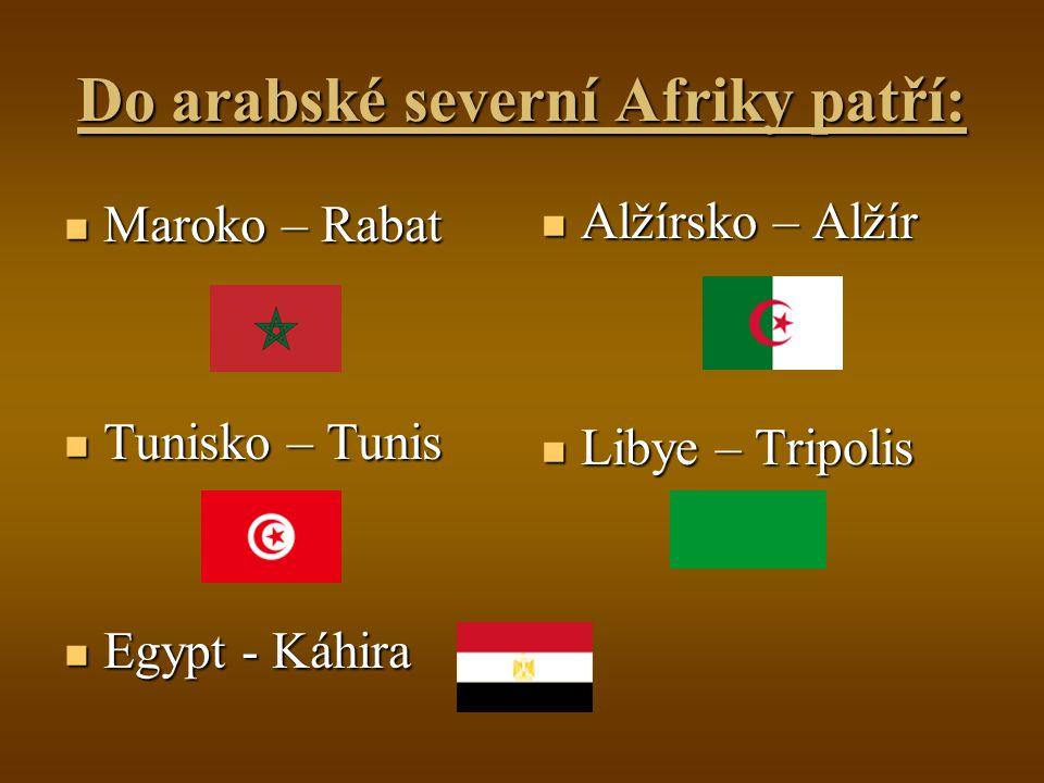 Do arabské severní Afriky patří: