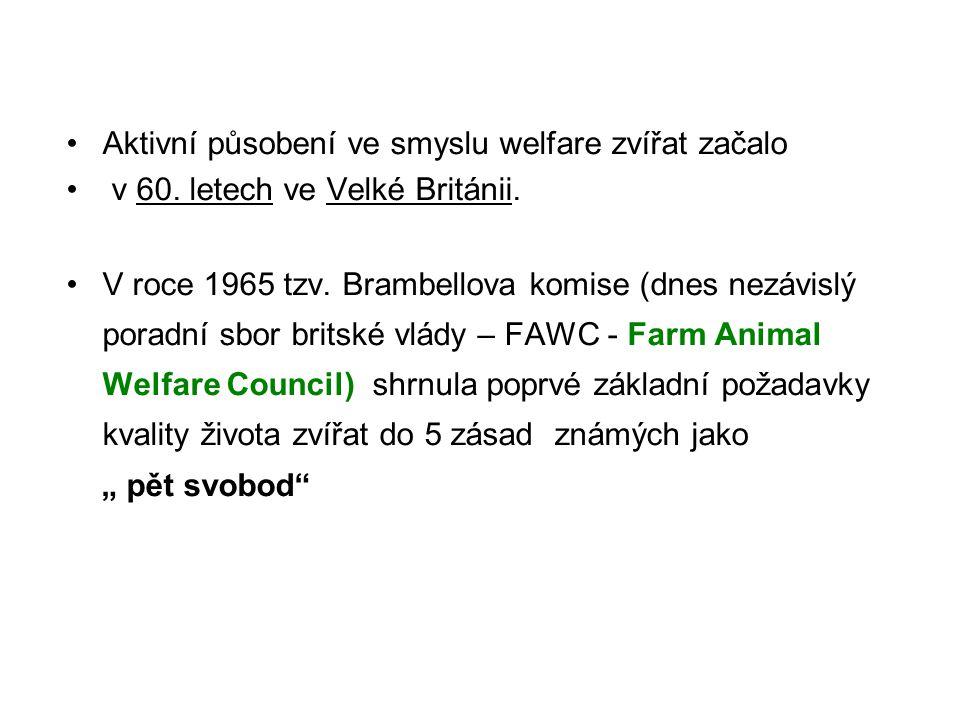 Aktivní působení ve smyslu welfare zvířat začalo
