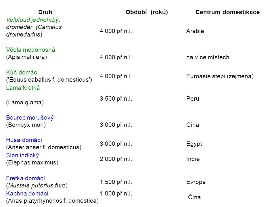 Druh Období (roků) Centrum domestikace. Velbloud jednohrbý, dromedár (Camelus dromedarius)