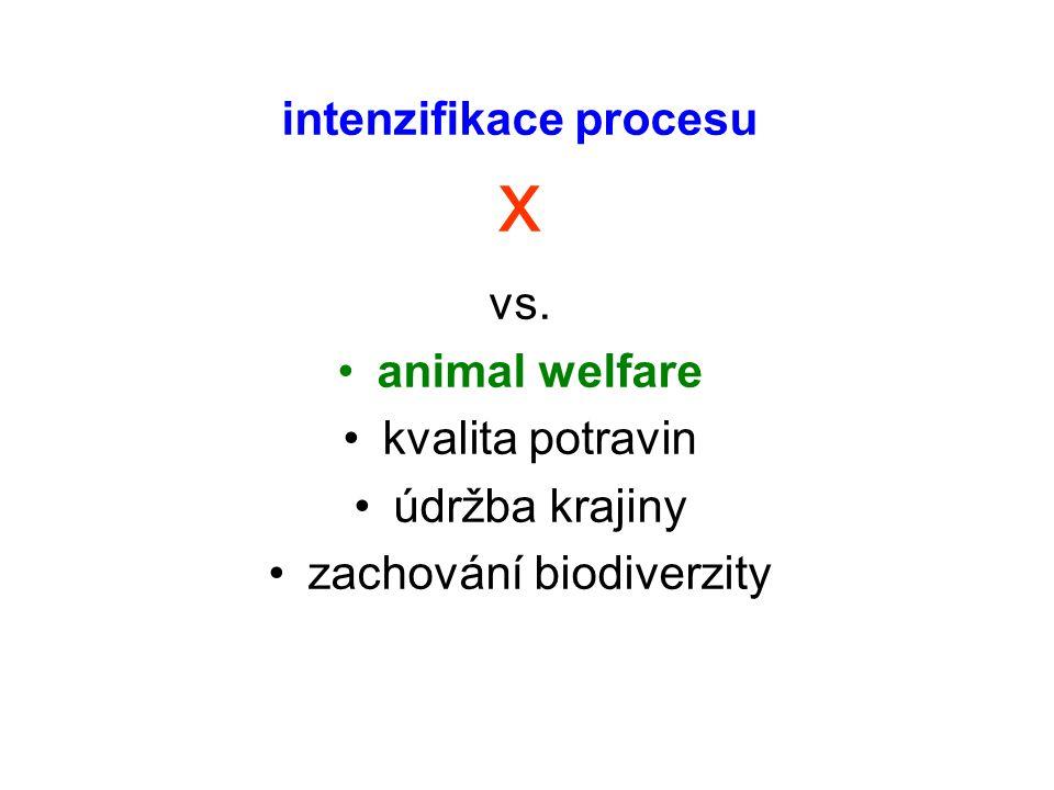intenzifikace procesu x