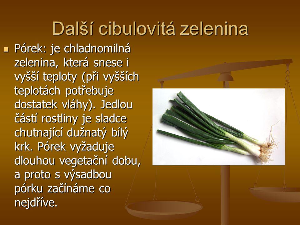 Další cibulovitá zelenina