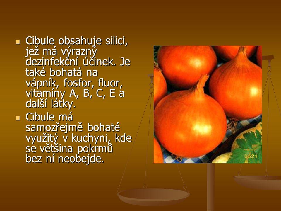Cibule obsahuje silici, jež má výrazný dezinfekční účinek