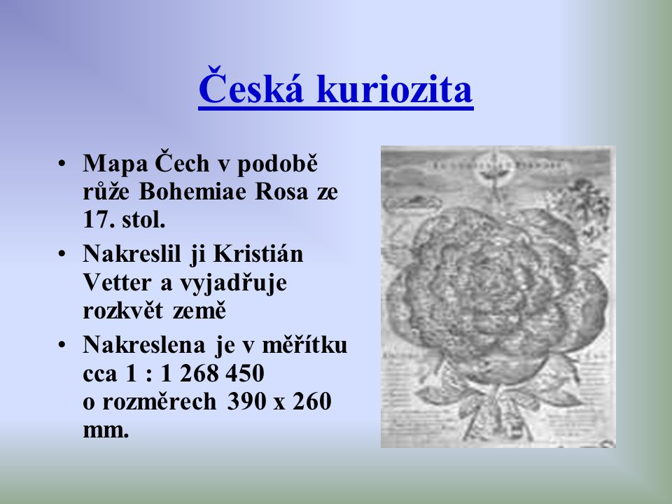 Česká kuriozita Mapa Čech v podobě růže Bohemiae Rosa ze 17. stol.