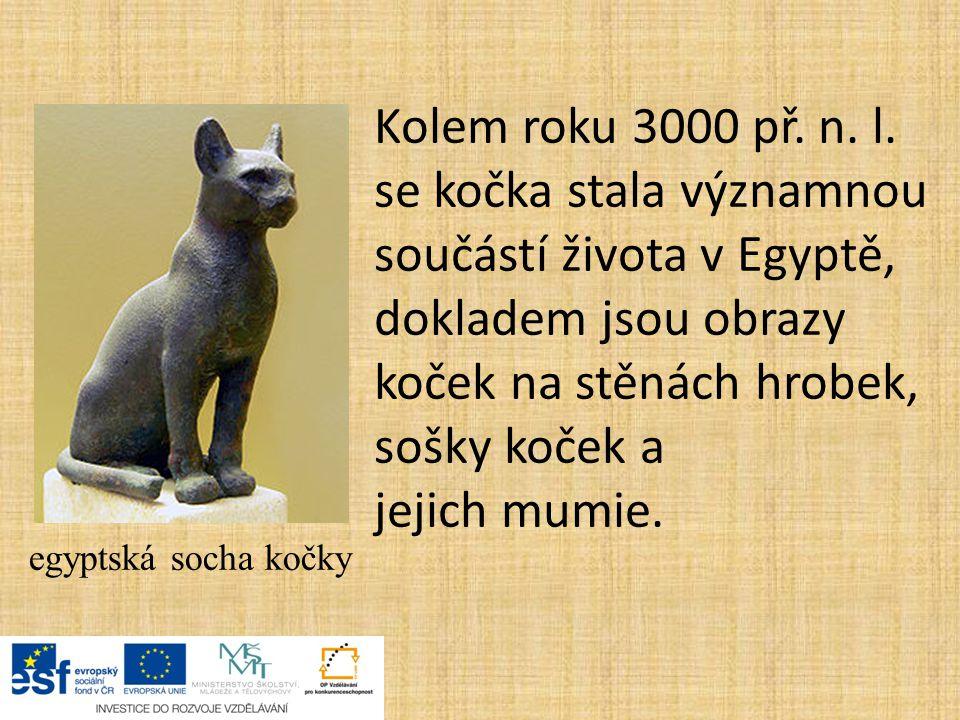 Kolem roku 3000 př. n. l. se kočka stala významnou součástí života v Egyptě, dokladem jsou obrazy koček na stěnách hrobek, sošky koček a jejich mumie.
