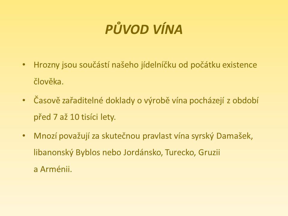 Původ vína Hrozny jsou součástí našeho jídelníčku od počátku existence