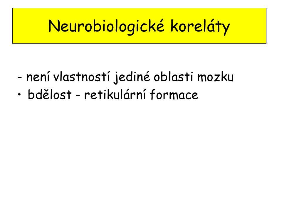 Neurobiologické koreláty