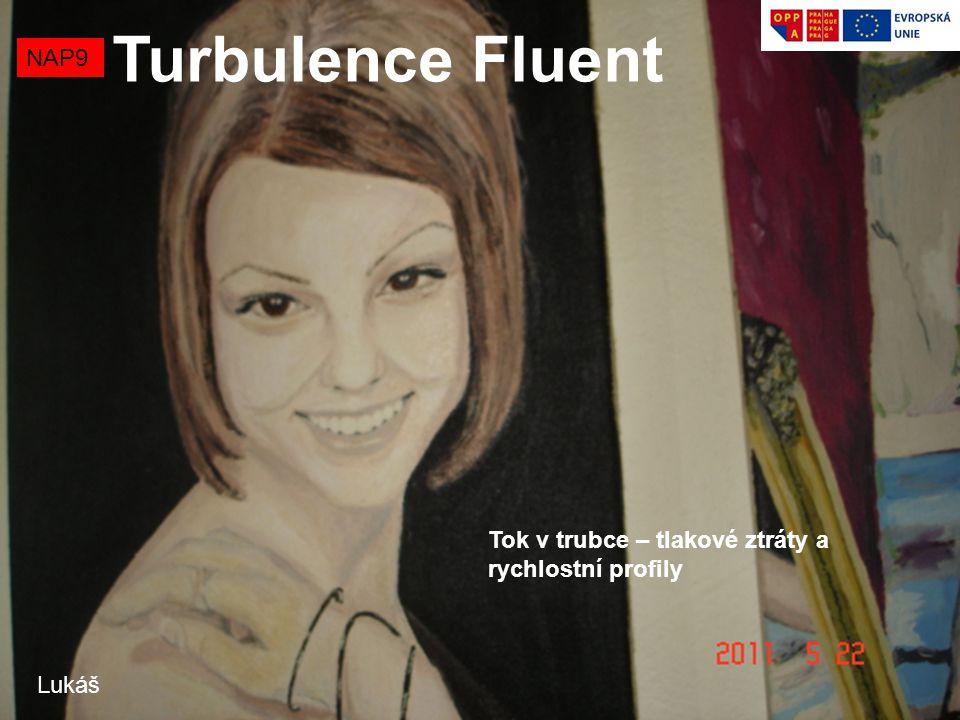 Turbulence Fluent NAP9 Tok v trubce – tlakové ztráty a rychlostní profily Lukáš