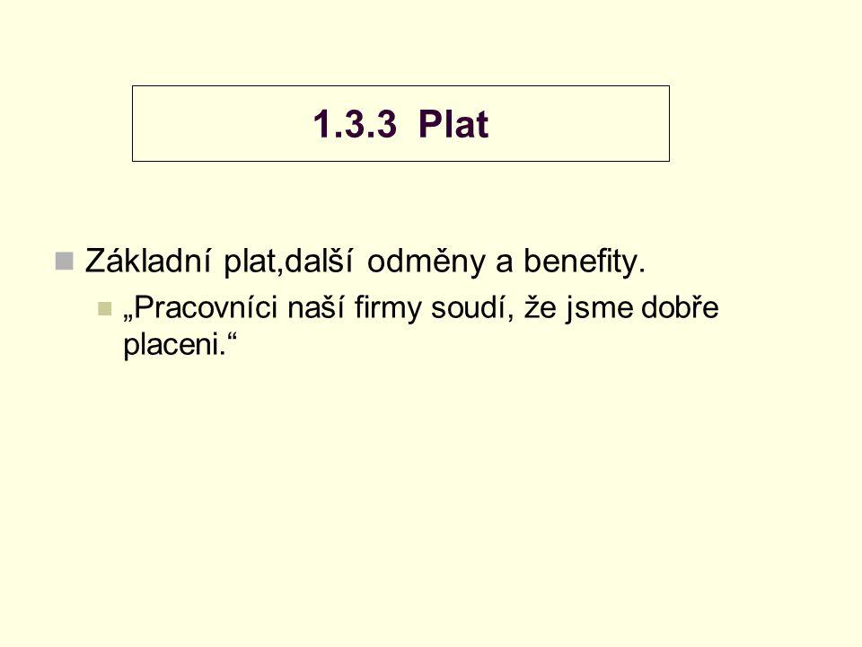 1.3.3 Plat Základní plat,další odměny a benefity.