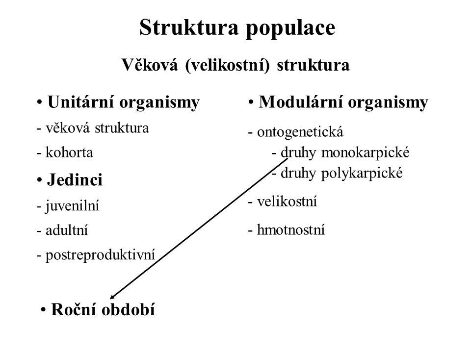 Věková (velikostní) struktura
