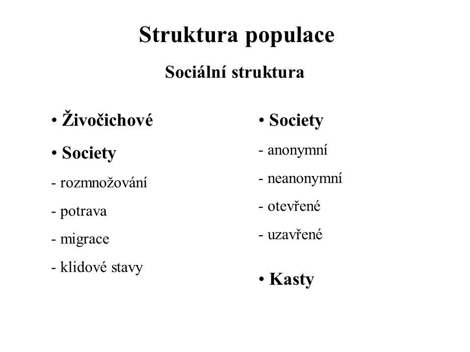Struktura populace Sociální struktura Živočichové Society Society