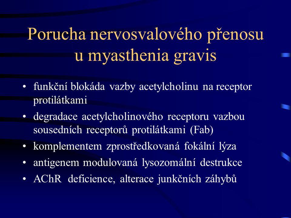 Porucha nervosvalového přenosu u myasthenia gravis