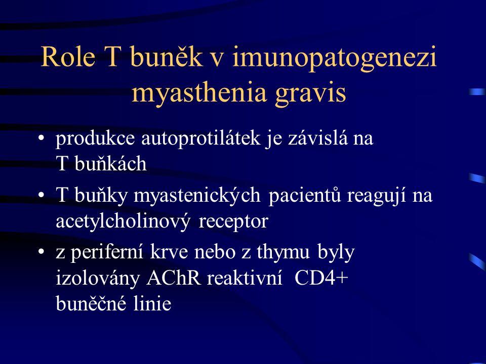 Role T buněk v imunopatogenezi myasthenia gravis