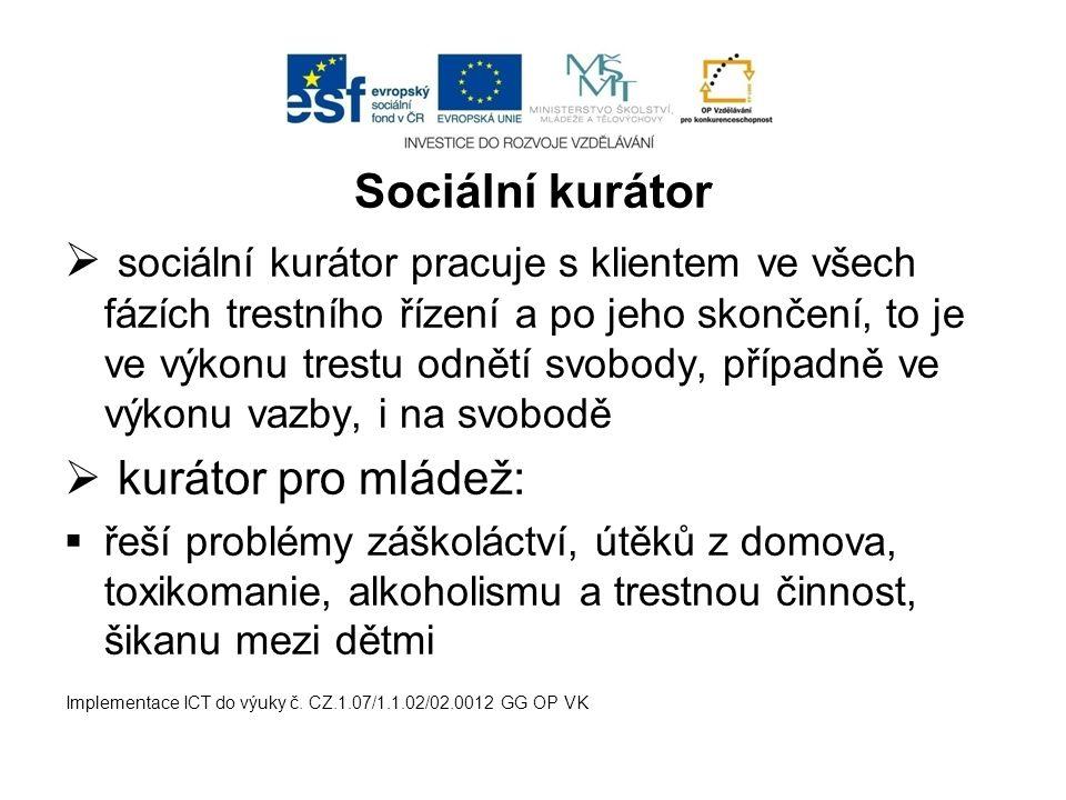Sociální kurátor