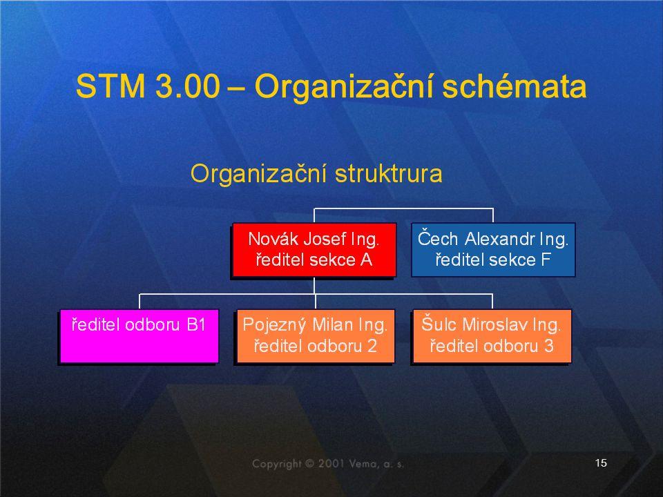 STM 3.00 – Organizační schémata