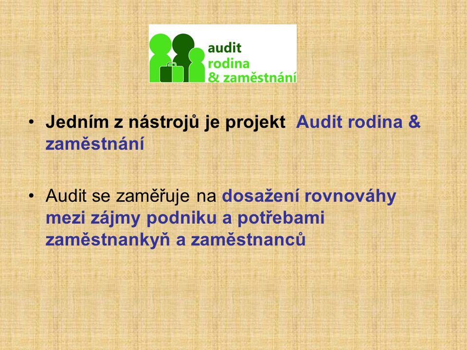Jedním z nástrojů je projekt Audit rodina & zaměstnání