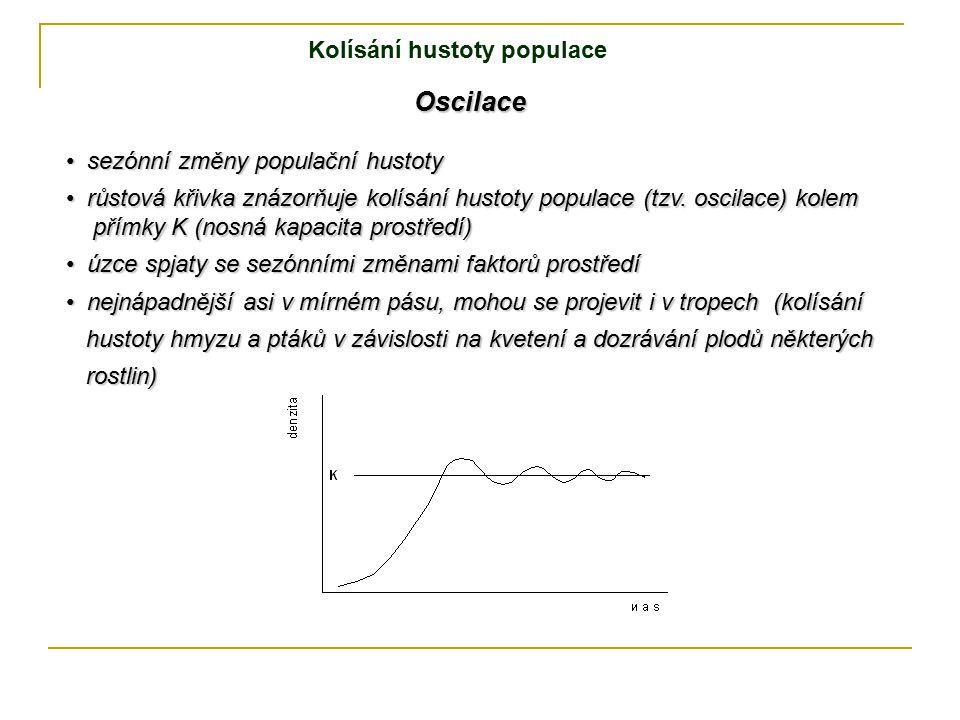 Oscilace Kolísání hustoty populace sezónní změny populační hustoty