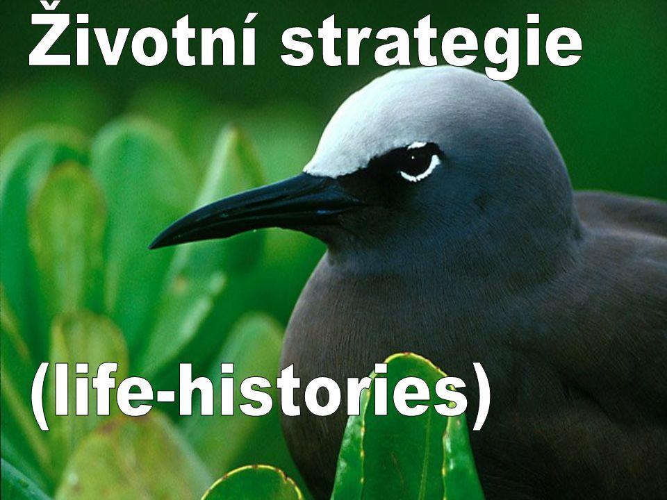 Životní strategie (life-histories)