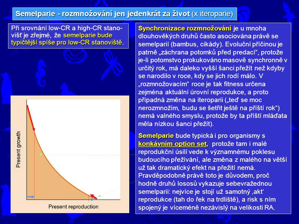 Semelparie - rozmnožování jen jedenkrát za život (x iteroparie)