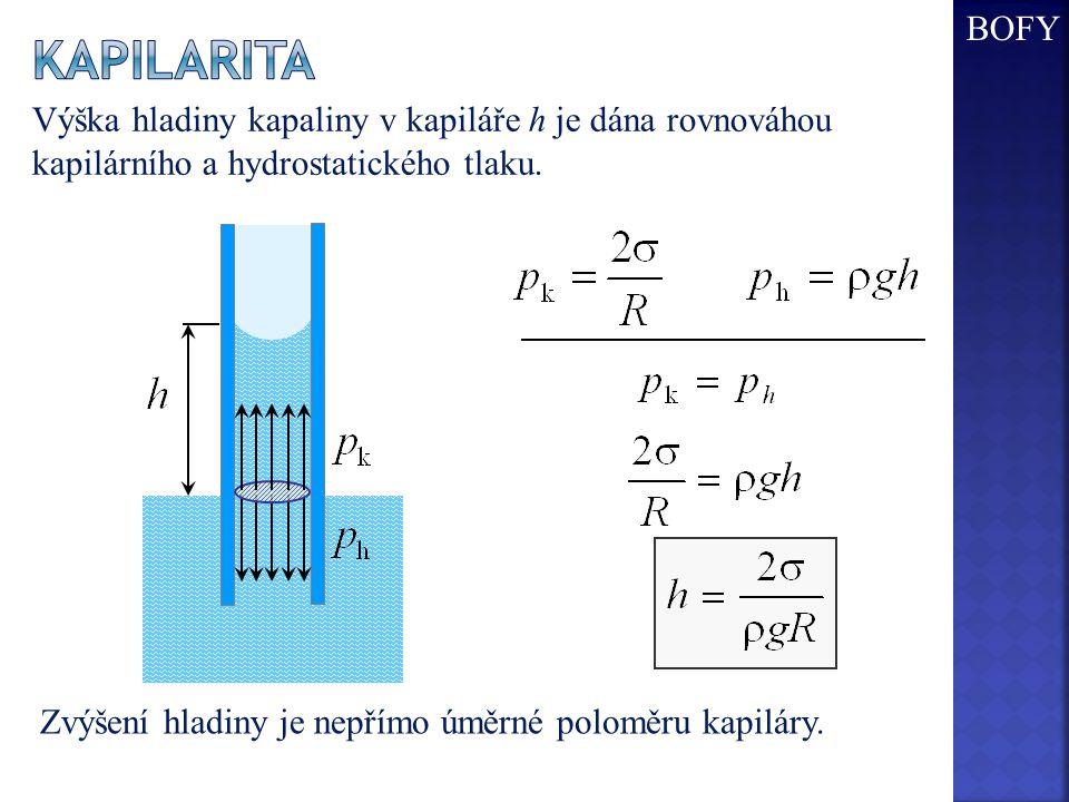 BOFY Kapilarita. Výška hladiny kapaliny v kapiláře h je dána rovnováhou kapilárního a hydrostatického tlaku.